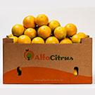 Para as frutas vendidas a granel